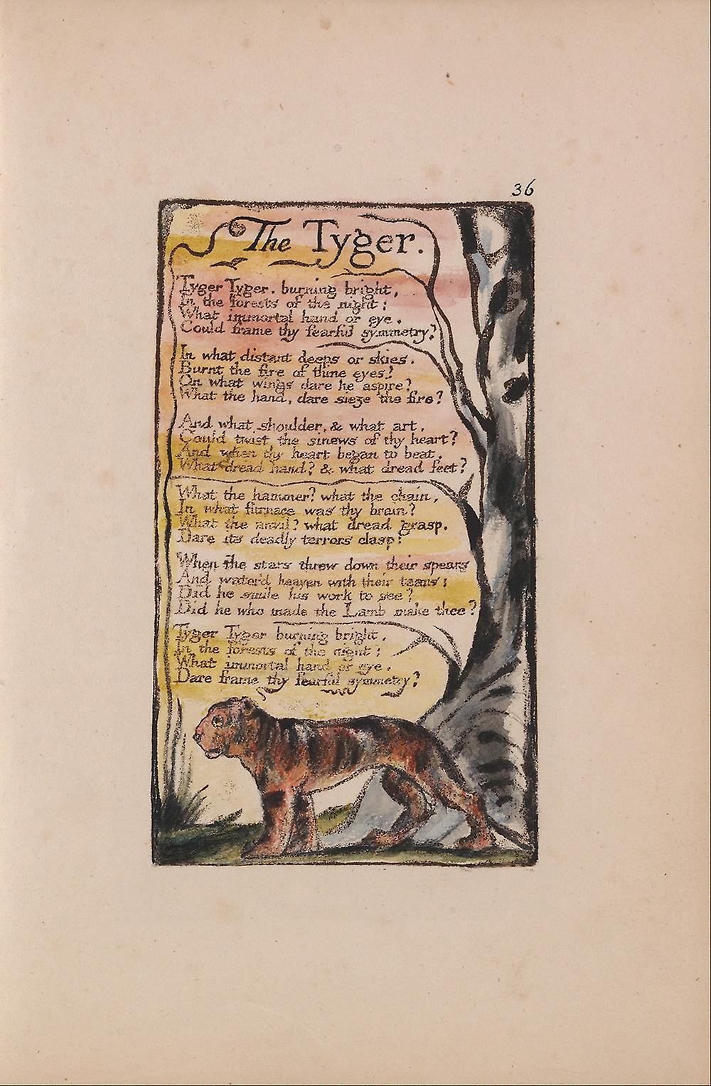 """a review of the writing style in the tyger by william blake William blake's poems """"the lamb"""" and the utilization of the spelling of tiger as tyger suggests that blake is trying to evoke plagiarism-free writing."""