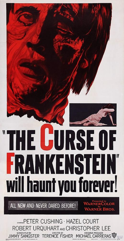 frankenstein essays English essays - frankenstein - why is frankenstein considered a gothic novel and fathers and sons and great expectations considered realist.