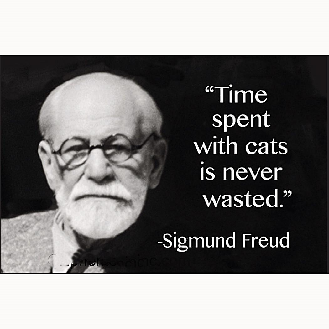 was freud crazy or correct If you were to read freud and fliess at that time you wouldn't know which of them - or whether both of them - were crazy bergmann: freud was desperately alone.