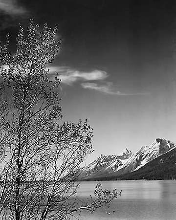 biography of ansel adams Ansel adams, a masterful photographer and a lifelong conservationist, who encouraged understanding of, and respect for, the natural environment was born ansel easton adams on february 20, 1902, in san francisco, california, near the golden gate bridge.