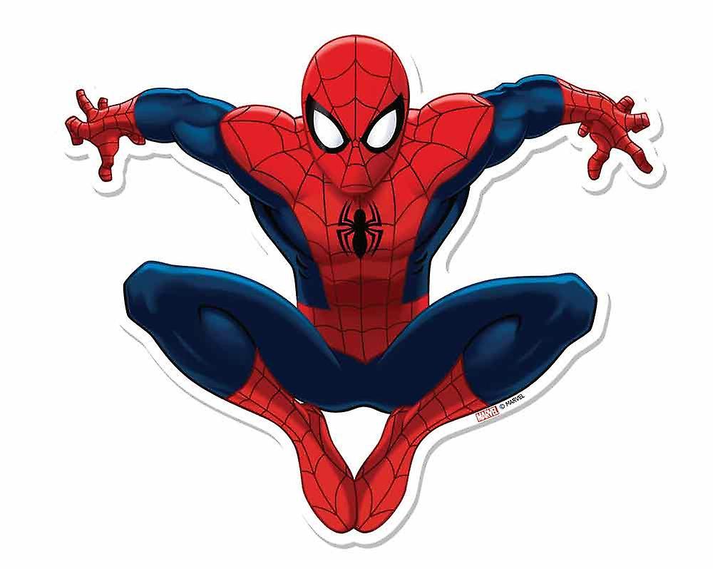 الرجل العنكبوت تأثير 3d آعجوبة انقطاع الكرتون الرسمية جدار الفن