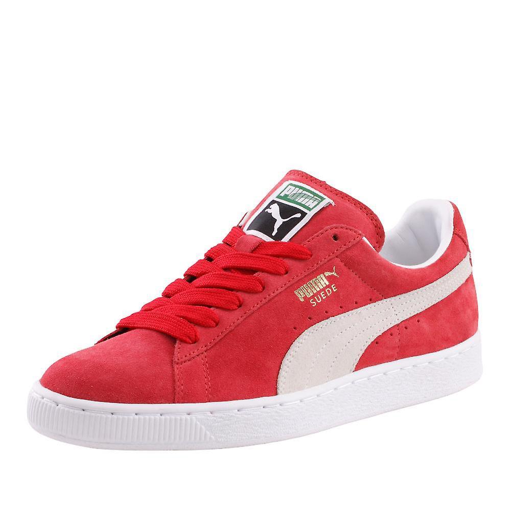 sale retailer da837 b80af Puma Suede Classic Team Regal Redwhite 35263405 universal all year men shoes