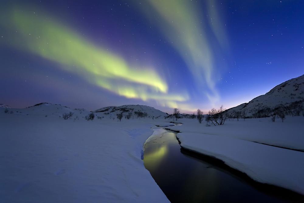 Ajvani | Fruugo Norvegia