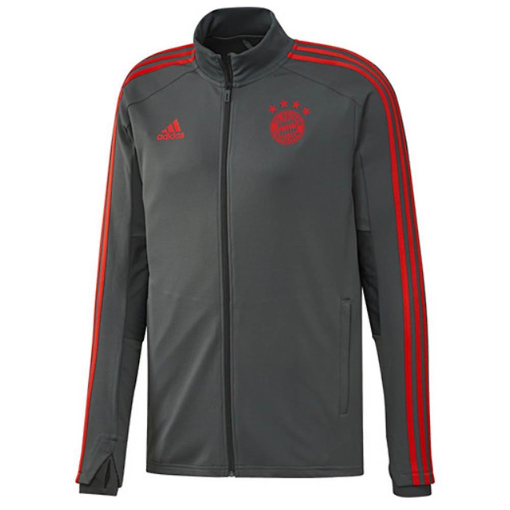 2018 2019 Bayern München Adidas trening Track Jacket (Utility Ivy)