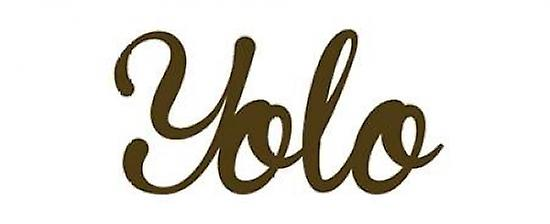 Yolo Poster Print by Anna Quach