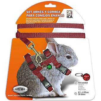 Ica Red Dwarf Rabbits Harness (Small pets , Leads & Harnesses)
