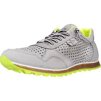 Cetti Sport / C848 Color Stoam Shoes