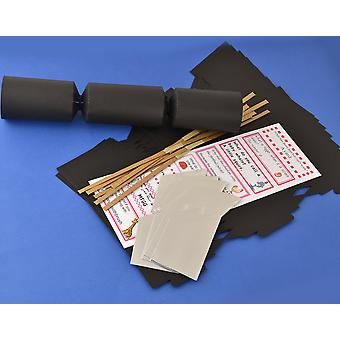 8 Black Make & Fill Your Own DIY Recyclable Christmas Cracker Craft Kit