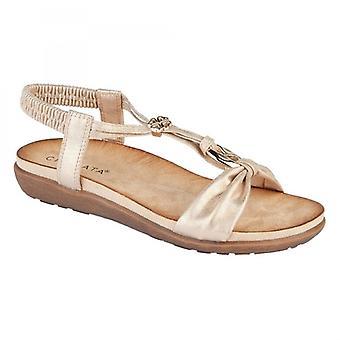 Cipriata Zana señoras tobillo correa oro sandalias adornadas oro rosa