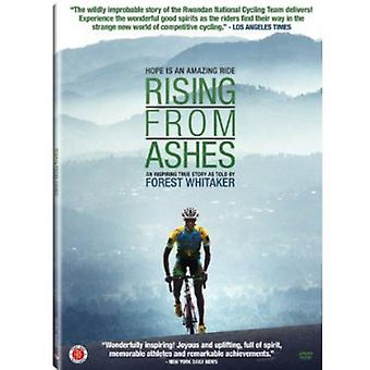 Rising From Ashes [DVD] USA import