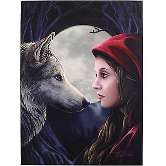 Lisa Parker Moonstruck Canvas
