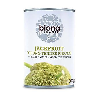 Tender Jackfruit in Zout Water 400 g