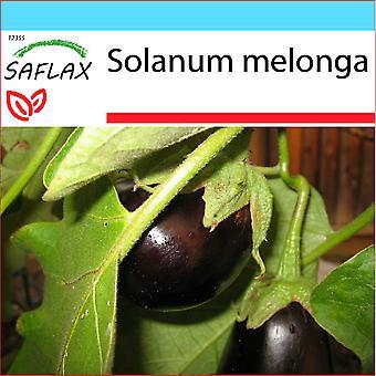 Saflax - gave sett - 20 frø - aubergine - Aubergine - Melanzana - Berenjena - Eierbaum