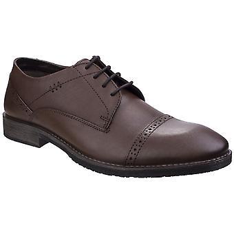 Hush filhotes masculino craig luganda brogue sapato marrom 25747