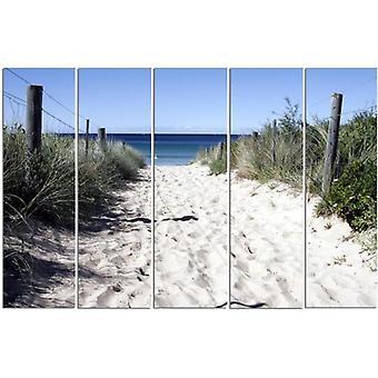 Vijf deel foto op canvas, Pentaptych, type C, pad door de duinen