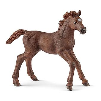 Schleich Horse Club English Thoroughbred Foal Horse Toy Figure (13857)