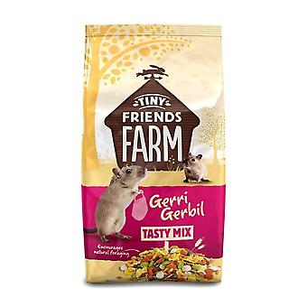 Tiny Friends Farm Gerri Gerbil Food