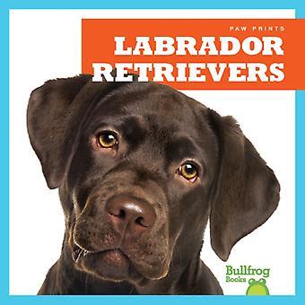 Labrador Retrievers by Jenna Lee Gleisner