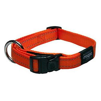 Rogz Fanbelt Collar - Size L (Dogs , Collars, Leads and Harnesses , Collars)
