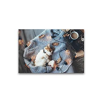 Kat slapen op trui Poster -Afbeelding door Shutterstock