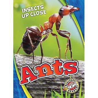 Ants by Patrick Perish - 9781626176577 Book
