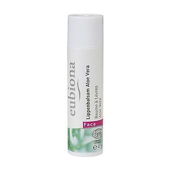 Organic aloe vera lip balm 4 g