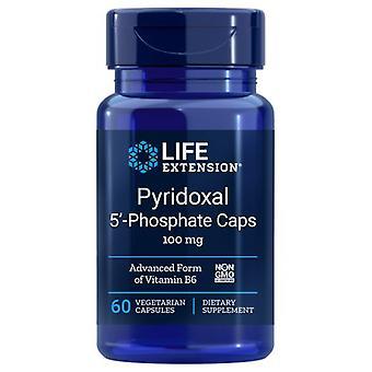 Extensão de Vida Piridoxal 5 Tampas fosfatos, 100 mgs, 60 vcaps