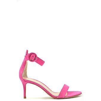 Gianvito Rossi Ezbc443018 Women's Fuchsia Suede Sandals