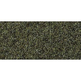 NOCH 8320 Grass rebanho Fenlands Verde escuro