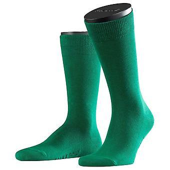 Familie Falke Socken - Golf Green