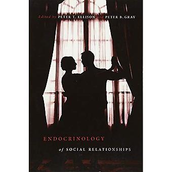 Endokrinologie der sozialen Beziehungen