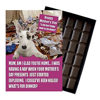 Bull Terrier propietario perro amante madre?s día regalo chocolate presente para mamá
