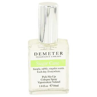 Demeter af Demeter sukkerrør Cologne Spray 1 oz/30 ml (kvinder)
