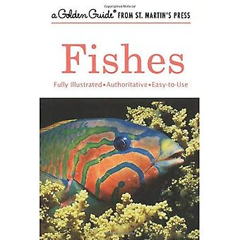 Fishes: A Guide to Fresh- And Salt-Water Species (Golden Guide)