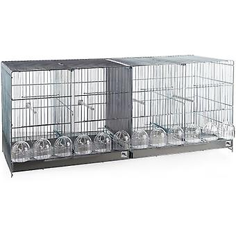 RSL Cage Ref. 1404 Cria 1 Mt. Zincada (Birds , Cages and aviaries , Cages)