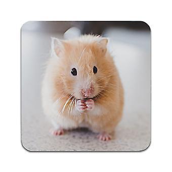 2 ST Hamster Coasters