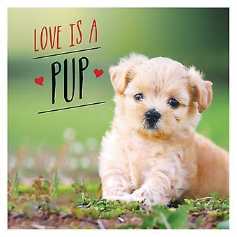 Love is a Pup by Charlie Ellis