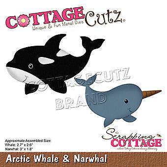 Scrapping Cottage Arctic Whale & Narval