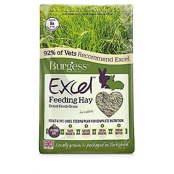 Excel Feeding Hay 100% Timothy Hay -1kg