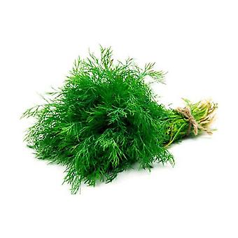 Herb Thyme Bunches Whole 1 unit