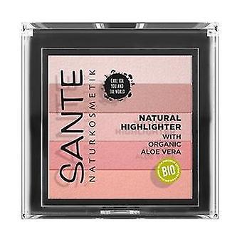 Powder illuminator 5 shades 02 1 unit (Pink)