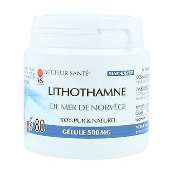 Lithothamne de mer de norvège 500mg 80 capsules