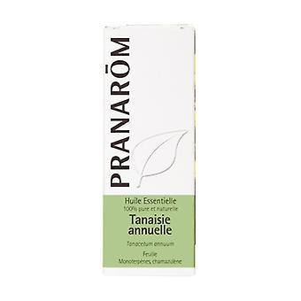 Annual tansy chemotyped essential oil - leaf 30 ml of essential oil