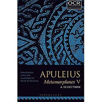 Apuleius Metamorphosen V: eine Auswahl