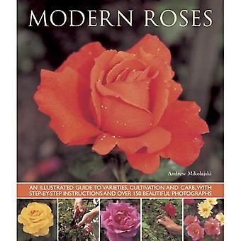 Moderna rosor: En illustrerad Guide till sorter, odling och vård, med stegvisa instruktioner och över...