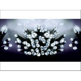 Premier Decorations Battery  LED Lights x 200 White LB112384W