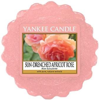 Yankee candle sun drenched apricot rose wax tart