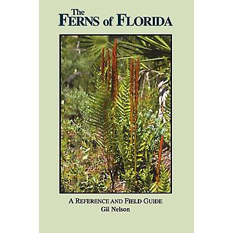The Ferns of Florida by Gil Nelson