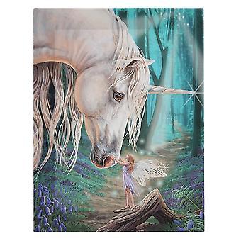 19x25 Fairy Hvisker Lerret Plakett av Lisa Parker