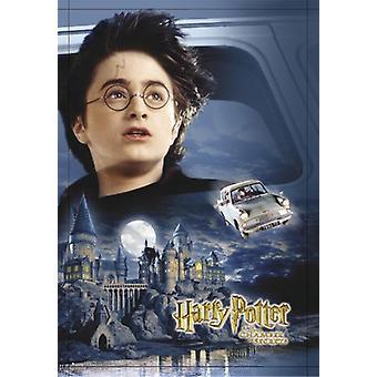 Harry Potter e la camera dei segreti del castello, auto, Harry